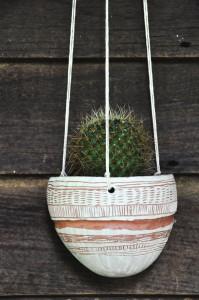 cactusplanter1