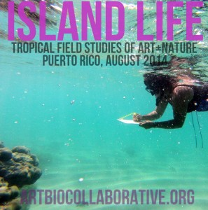 ISLAND LIFE: Tropical Field Studies of Art+Nature in Puerto Rico