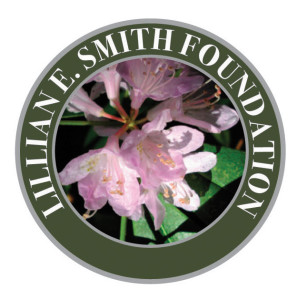Lillian E. Smith Center logo