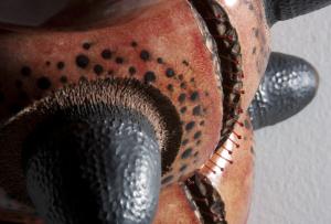 FSU Art MFA '14 Brad Blair BEASTIES