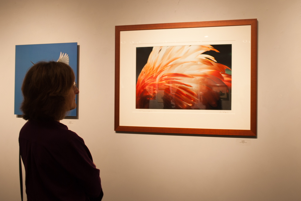 Angled shot of a person looking at a photograph