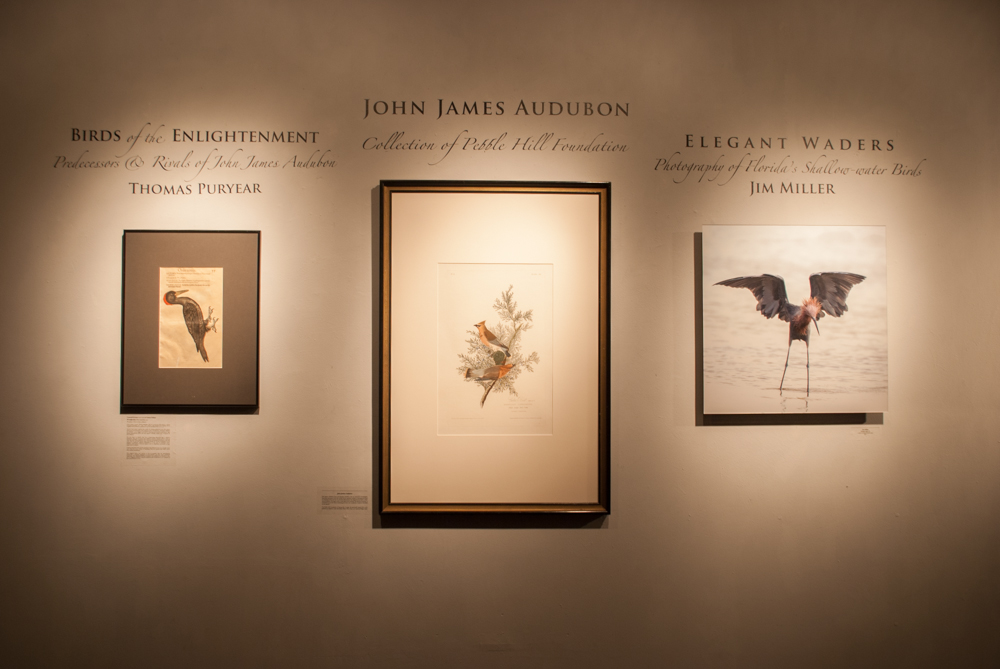 Frontal shot of all three exhibitions with their titles