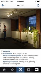 Shane Aslan Selzer: update on #posingwithplants