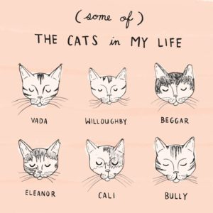 The cats in my life - Sunny
