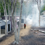 Ruth Dusseault piece with smoke entering a neighborhood